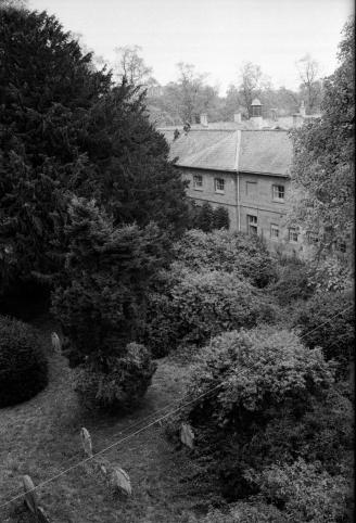 Photo-298 house and garden