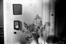 Photo-64