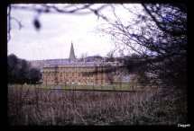 Sherborne View
