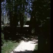 sherborne-walk